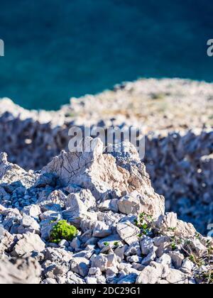 Drywall on Krk island near Voz, in Croatia Europe sunshine sunlight landscape scenery scenic steep downwards view towards sea calm dark Blue surface - Stock Photo
