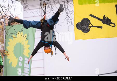 Wiesbaden, Germany. 20th Nov, 2020. An activist hovers roped to the flag of Bündnis90/Die Grünen and a demo banner. Activists from Robin Wood, environmental and nature conservation organisation, have occupied two trees in front of the party headquarters of the Hessian Greens in the state capital. The organisation is protesting against the clearings in connection with the expansion of the A49 and wants to remind the Greens in Hesse of their political responsibility. Credit: Andreas Arnold/dpa/Alamy Live News - Stock Photo