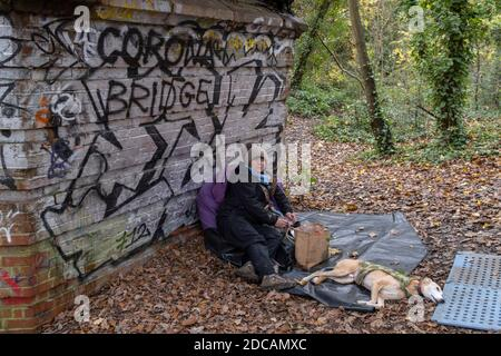 An activist against the proposed felling of two 100+ year-old oak trees, occupies the site under  'Pissarro's' footbridge whose renovation has been deemed necessary by the Southwark Council , on 17th November 2020, in London, England. The Nunhead to Crystal Palace (High Level) railway once passed through the Wood and Impressionist artist Camille Pissarro (1830–1903) famously painted a railway landscape from the bridge in the 1870s. Sydenham Hill Wood forms part of the largest remaining tract of the old Great North Wood, a vast area of worked coppices and wooded commons that once stretched acro - Stock Photo