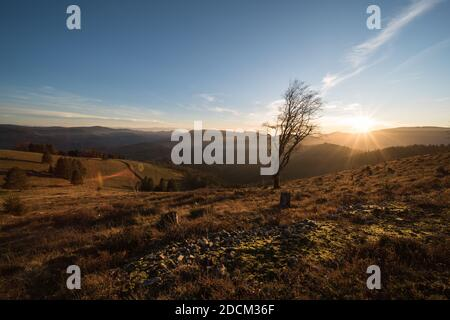beautiful landscape in the southern black forest in germany, near the belchen summit. - Stock Photo