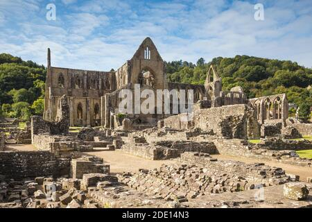 Tintern Abbey, Tintern, Wye Valley, Monmouthshire, Wales, United Kingdom, Europe
