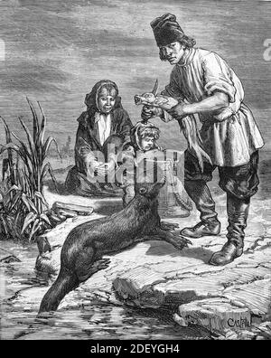 Fisherman Feeding Tame Otter, probably a North American River Otter, Lontra canadensis, with Fresh Fish in United States, US or USA (Engr Castelli, 1884) Vintage Engraving or Illustration Stock Photo