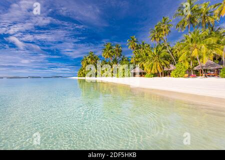 Amazing nature beach with palm trees and moody sky. Summer vacation travel holiday background concept. Maldives paradise beach. Luxury travel summer
