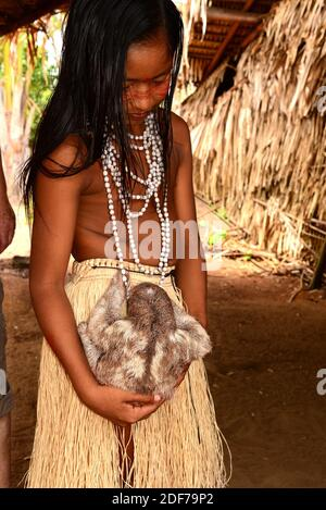 Tatuyo girl with a pale-throated sloth (Bradypus tridactylus). This photo was taken in Manaus, Brazil.