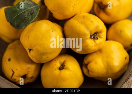 Quince on a wooden board,Haufen Quitten,Quinces on a table, colour photograph of a pile of quinces,yellow quince, bunch of yellow quinces