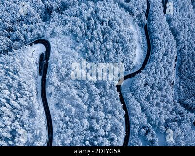 Stunning winter scene landscape of snow covered trees and forest as a road cuts through the landscape.