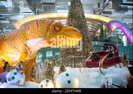 08.12.2020, Singapore, Republic of Singapore, Asia - Dinos, a sledge and Christmas tree serve as Christmas decoration and setting at Changi Airport.