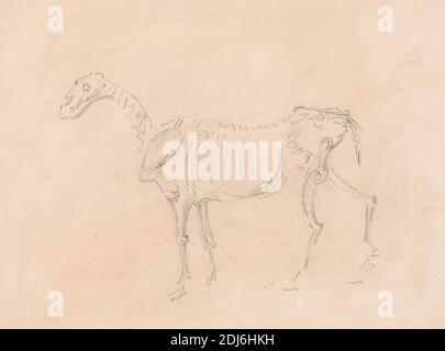 Horse Skeleton, Sawrey Gilpin, 1733–1807, British, undated, Graphite on medium, moderately textured, beige, wove paper, mounted on, moderately thick, slightly textured, cream, wove paper, Mount: 9 1/8 × 10 13/16 inches (23.2 × 27.5 cm) and Sheet: 6 15/16 x 9 5/16in. (17.6 x 23.7cm), animal art