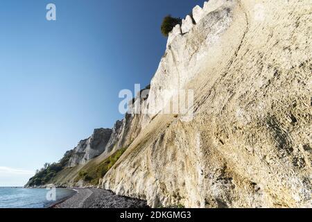 Chalk cliffs 'Møns Klint', Denmark, Baltic Sea, steep coast with bizarre chalk formations Stock Photo