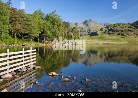 Great Langdale, Cumbria, England. View across tranquil Blea Tarn to the Langdale Pikes, early morning.