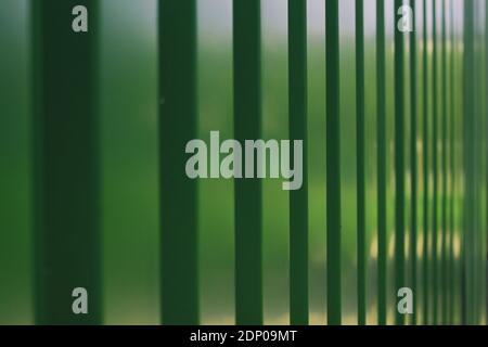 Green texture of metal fence. High quality photo