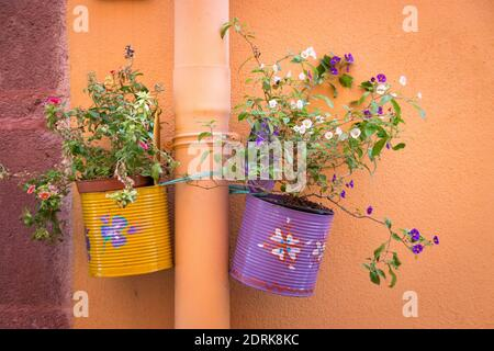 Two Colorful Lacquered Cans Used As A Creative Hanging Flower Pot At A Wall