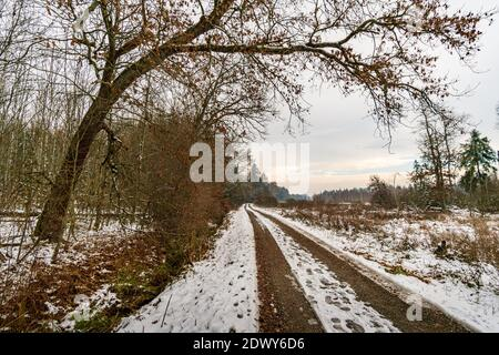 Winter hike through the Pfrunger Ried to the Bannwald Tower near Ostrach in Upper Swabia - Stock Photo
