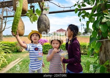 Happy Asian kids eating popcorn in vegetable farm outdoor. - Stock Photo
