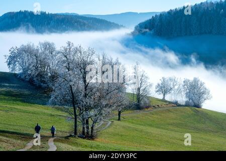Österreich, Niederösterreich, Scheibbs, Blick vom Blassenstein auf die Wolkendecke und Berglandschaft