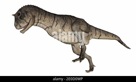 Carnotaurus dinosaur - 3D render - Stock Photo
