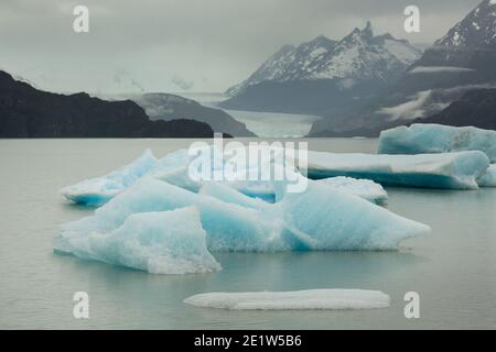 Icebergs calved from Glacier Grey float in the waters of Lago Grey, with the jagged peaks of Torres del Paine behind, Patagonia, Chile