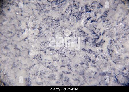 Macro close up of ice crystals on a blue background. 3d visual depth. Color abstract grunge background. Colorful small squares. Futuristic backdrop, modern banner, stylish wallpaper. Design pattern shape. High quality photo