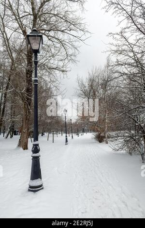 Frosty snow alley in the winter Park with street lights. - Stock Photo