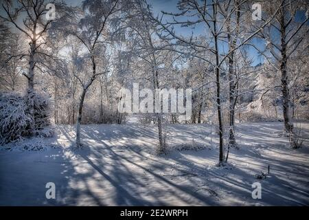 DE - BAVARIA: Sunny winter scene near Bad Toelz in the Isar Valley