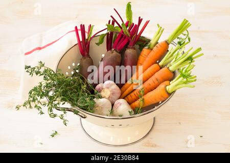 Fresh young organic vegetables, carrots, beets, garlic and greens for salad in colander on white background, selective focus. Healthy vegan food - Stock Photo