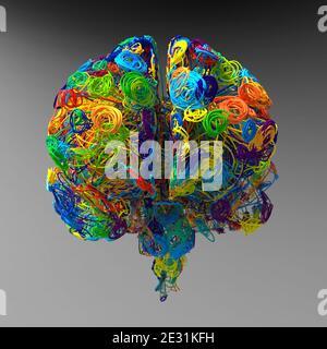 3d render. Brain colored illustration