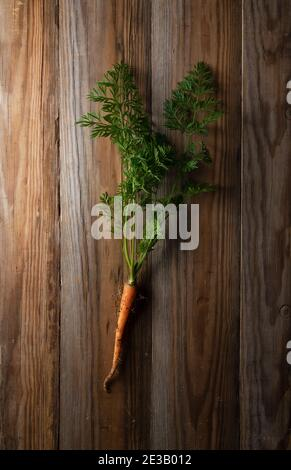 Freshly picked carrots placed in the wooden background