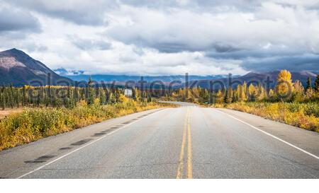 Autumn collors and empty highway in wilderness of Alaska  USA