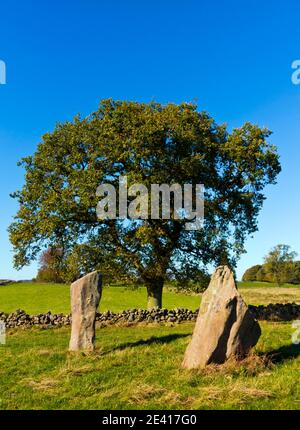 Nine Stones Close or Grey Ladies a Bronze Age stone circle near Harthill Moor and Birchover in the Peak District National Park Derbyshire England UK