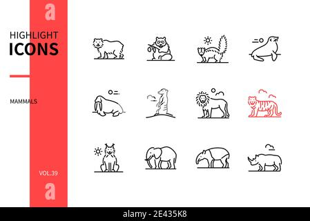 Different mammals - modern line design style icons set. Black and white images. Various wild animals collection. Bear, panda, skunk, seal, walrus, mee