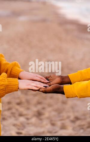 Close-up of man and woman hands clasped at beach