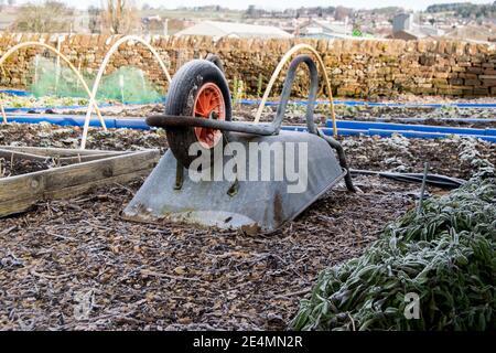 Rusted upturned wheelbarrow on an allotment - Stock Photo