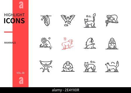Different mammals - modern line design style icons set. Black and white images. Various animals concept. Bat, lemur, slow loris, tamarin, macaque, ham