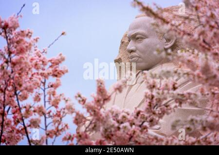 WASHINGTON - APRIL 8, 2015: The memorial to the civil rights leader Martin Luther King, Jr. during the spring season in West Potomac Park. - Stock Photo