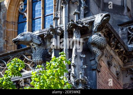 Gargoyles on Ulm Minster or Cathedral of Ulm city, Germany. Detail of famous Gothic church, medieval German architecture. Fish sculpture on ornate lux