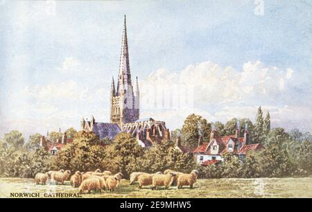 A coloured postcard of Norwich Cathedral dating from the 1920s. - Stock Photo