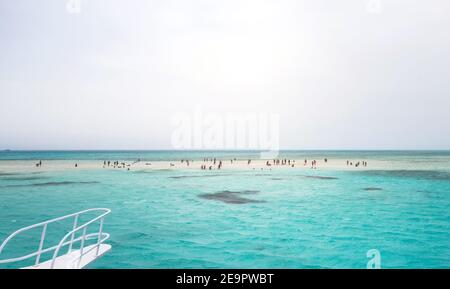 Ras Mohammed in the red sea swimming White Island. Snorkeling Boat Trip Sharm el Sheikh, Egypt at the southern extreme of the Sinai Peninsula.