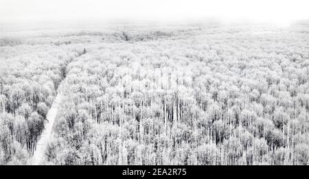 Aerial view of a road cutting through a snowy forest on a cloudy day