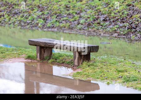 wooden bench in flooded grassland