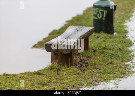 wooden bench in flooded grassland, dustbin nearby