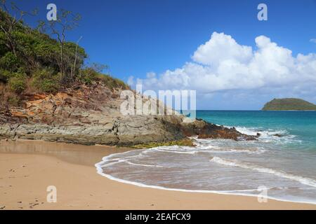 Guadeloupe sandy beach of Basse-Terre island. Caribbean vacation landscape. Tillet Beach (Plage de Tillet).