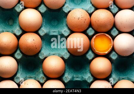 Raw chicken eggs in a turquoise egg box.