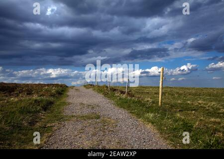 lonely way on the Feldberg in the Black Forest