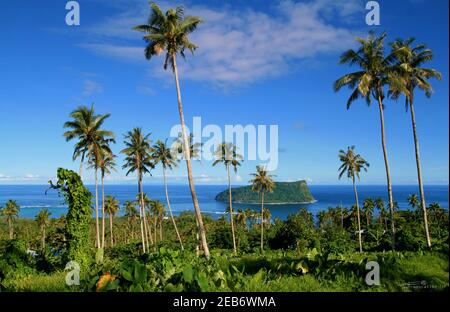 Panoramic view through the palm trees and native vegetation to the Pacific Ocean horizon with tropical island from island to island