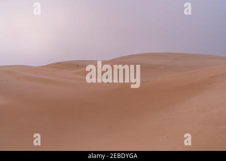 wild desert landscape and large sand dune with under an overcast evening sky