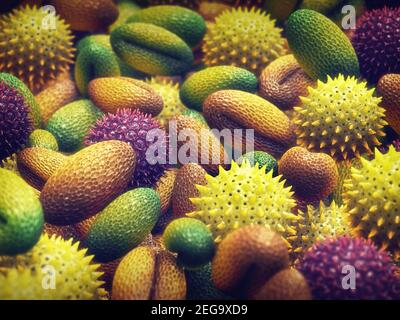 Pollen allergy is also known as hay fever or allergic rhinitis.