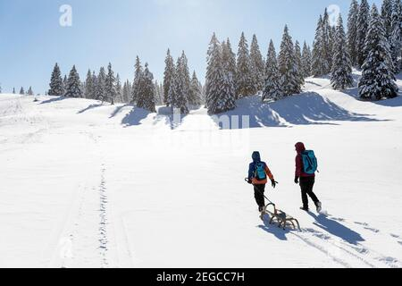 Mother and son towing a sled in the snow, winter fairytale landscape at Velika planina, Slovenia
