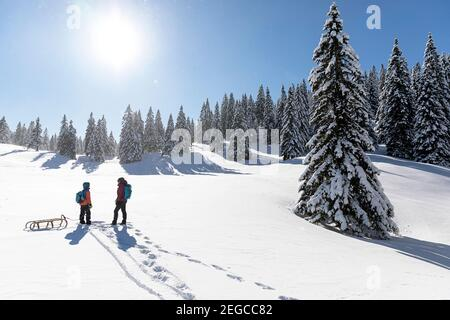 Mother and son towing a sled in the snow, winter fairytale landscape at Velika planina, Slovenia - Stock Photo