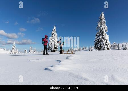 Mother and son towing a sled in the snow, winter fairytale landscape, Slovenia - Stock Photo