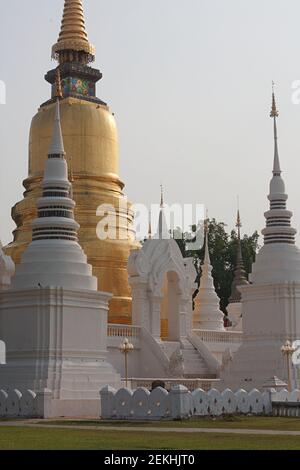 Wat Suan Dok - Stock Photo